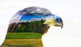 Double exposure eagle