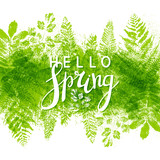 Fototapety Spring background with green leaves stamps