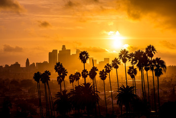 Los Angeles and Palm Trees Sunset