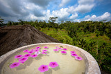 Pink flower blossome floating in stone bowl at Tegallalang rice terraces - Bali, Indonesia