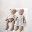 Still life with two plush teddy bear toys