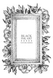 Rectangular frame with different flowers and plants drawn by hand with black .ink. Graphic drawing, pointillism technique. Place for text. Can be used as postcard, .illustration