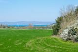 Panorama campagnolo sul Lago di Bolsena