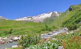rivière dans la vallée des glaciers en été