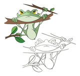Illustration of a Cute Green Frog. Cartoon Character