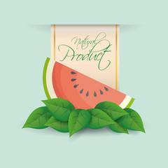 watermelon natural product label design vector illustration eps 10
