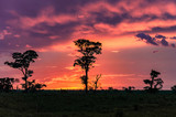 Wonderful colorful sunset on countryside