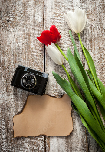 Camera and tulips