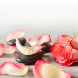 Spa stones and rose petals over grey background