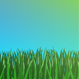 green grass on blue background