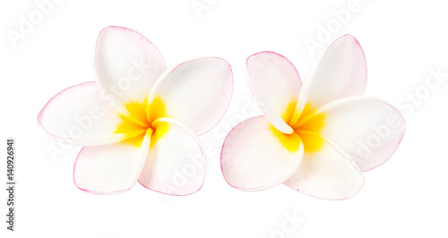 Fotobehang Plumeria Sweet pink plumeria isolate on white blackground