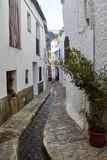 Alley in Pampaneira, Alpujarras