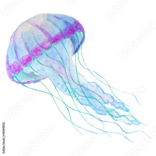 Fototapeta Jellyfish isolated n white background. Watercolor iilustration.