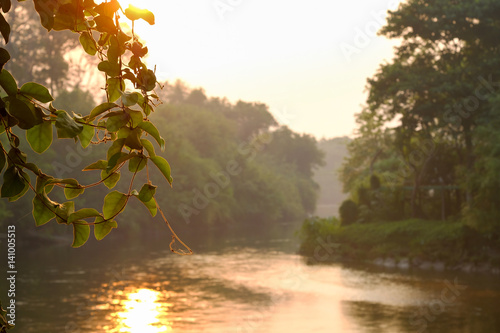 Foto op Aluminium Scandinavië Spring landscape, vine under sunshine of the small river at spring sunset, Nice morning scene on river in sunny time, thailand