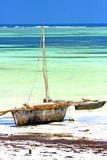 zanzibar beach seaweed in sand isle sky and boat