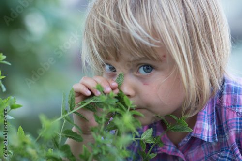 young baby caucasian blonde girl smell pepper mint leaf at her family urban vegetable garden