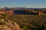 canyons and tablelands on Slickrock foot trail at sunrise with Island in the Sky district in the background Needles District of Canyonlands National Park, Utah, United States