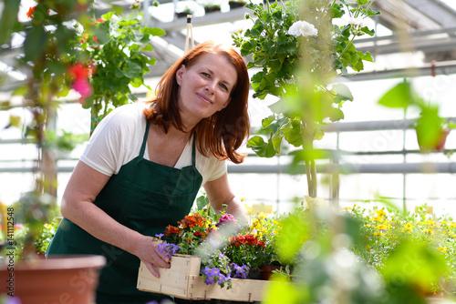 Gärtnerin arbeitet in einem Gewächshaus eines Blumenhandels
