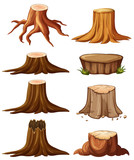 Different types of stumps