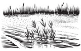 Vector illustration of river landscape with cattail and trees. - 141124907
