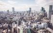 Tokyo aerial view