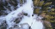 Aerial fly right facing down over winter forest with old trees in sunset time 4k prores footage