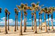 Beach & Tropical