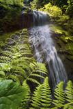 Cascade Fraser Valley