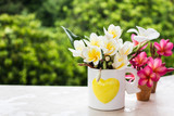 Yellow white flower plumeria or frangipani bouquet in heart pattern cup on green forest tree bush nature background