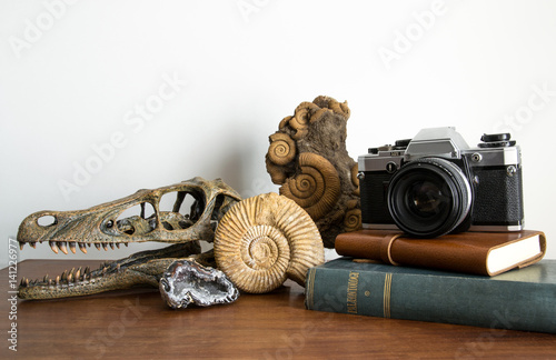 Collezione di antichità Poster