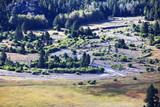 West Walker River Pikel Meadow in Sierra Nevada