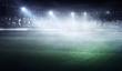 Foggy soccer field . Mixed media