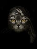 dark muzzle cat in brown camouflage Headband