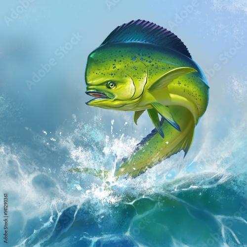 Fototapeta Mahi mahi or dolphin fish on background