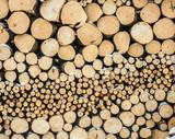 A log of fire wood