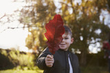 Boy Playing With Autumn Leaf in Garden