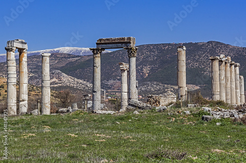 Aphrodisias Ancient City (Columns from the Temple of Aphrodite)