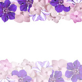Beautiful floral background of hydrangeas and clematis