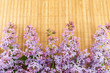 Lilac flowers on a wicker table