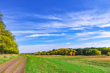 Bright blue sky and clouds in the autumn day over the field. Nature landscape.