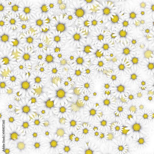 Seamless Daisy Pattern - 141457360
