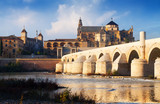 Mosque-cathedral of Cordoba and Roman bridge