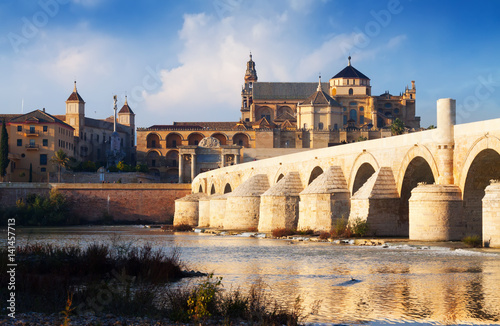 Poster  Mosque-cathedral of Cordoba and Roman bridge