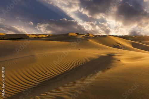 Poster Beautiful views of the desert landscape. Gobi Desert. Mongolia.