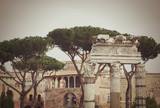 Ruins of the Roman Forum in Rome, Italy with copy space