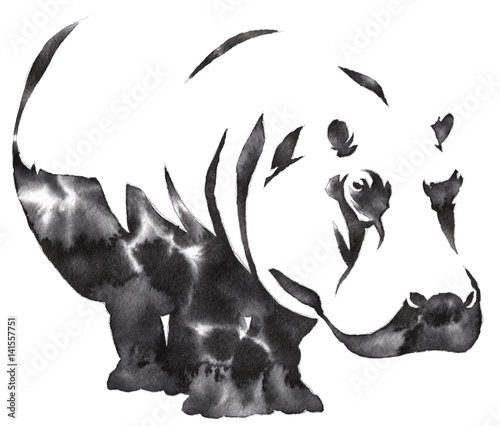 black and white monochrome painting with water and ink draw Hippo illustration - 141557751
