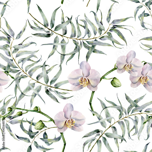Watercolor tropic pattern with eucalyptus and white orchids. Hand painted exotic ornament with branches with leaves isolated on white background. Natural print for design, fabric. - 141564972