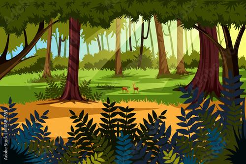 Nature Landscape scenery Background