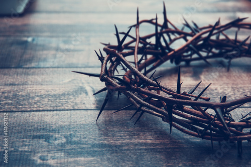 Crown of thorns Poster