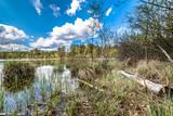 Spring lake landscape, beautiful nature scene